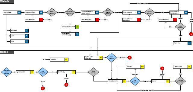 big-one-flow-chart-jpg.jpg